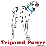Tripawd Power (Moose)