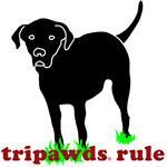 TriLabs Rule (Rear Leg)