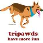 Tripawd Fun (Codie Rae)