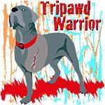 Tripawd Warrior Bellona