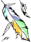 Soft Colors Feather