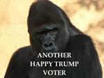 anti Trump joke
