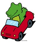 alligator road-trip