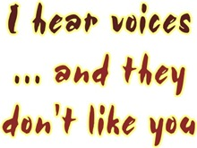 I hear voices and they don't like you