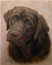 Chocolate Labrador Retriever Painting