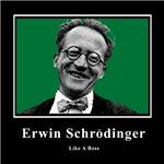 Erwin Schrodinger Like A Boss