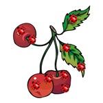 Ladybugs and Cherries