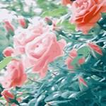 Pink Roses Garden Floral