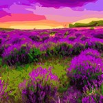 Red Sunset Purple Floral Landscape