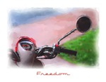 Freedom Scooter