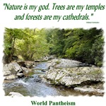 'Nature is my god.' quotation - Waterfall