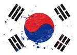 South Korean Flag (Punk)