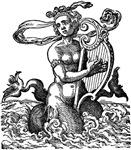 Mermaid with Lyre