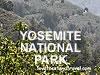Yosemite Park Gifts