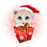 Kitten Christmas Santa with Big Red Gift
