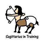 Sagittarius in Training