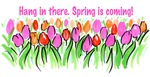 Spring is coming!