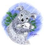 Mum & baby Koalas