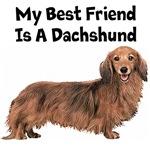 My Best Friend Is A Dachshund