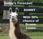30% Chance of Drama