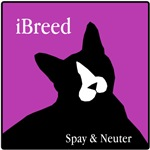 Spay and Neuter Cats