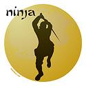 NINJA T-SHIRTS AND GIFTS