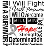 Brain Cancer Persevere Shirts
