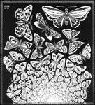 Escher Butterflies