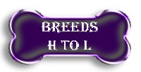 Breeds H to L