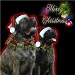 Brindle Merry XMas