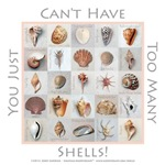 Too Many Shells! Collection