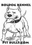 Boldog Kennel Pit Bulls.com