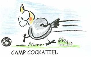 Camp Cockatiel
