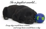 In A Perfect World (Lab)
