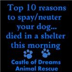 Top 10 Reason to Spay/neuter