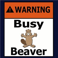 Warning - Busy Beaver