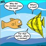 Stupid Fish Jokes