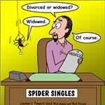 Black Widow Spider Dating
