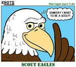 Scout Eagles