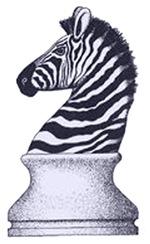 Zebra Knight Women's Clothing