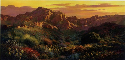 Arizona Desert Canvas