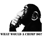 What would a chimp do?
