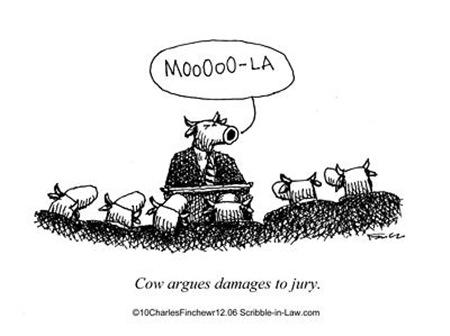 Cow Makes Jury Argument