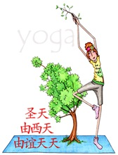 Yoga - Be The Tree