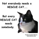 Every Rescue Cat Needs Somebody.
