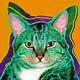 Larson Cats