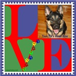 Personalize Pet Gifts!