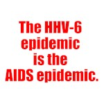The HHV-6 epidemic is the AIDS epidemic.