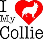 I Love My Collie