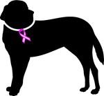 Saint Bernard Breast Cancer Support